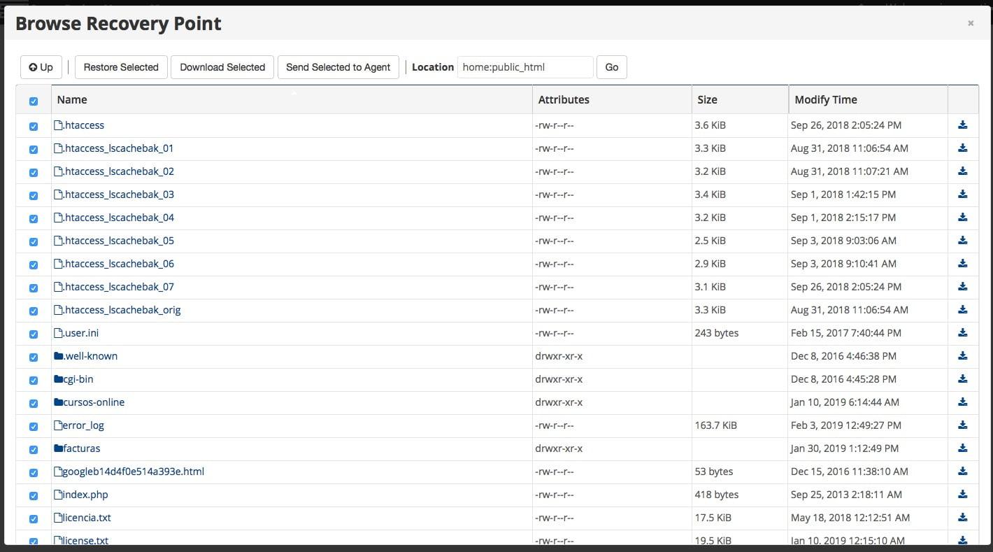 Seleccionar archivos a restaurar con el servicio de mantenimiento de WordPress y WooCommerce.